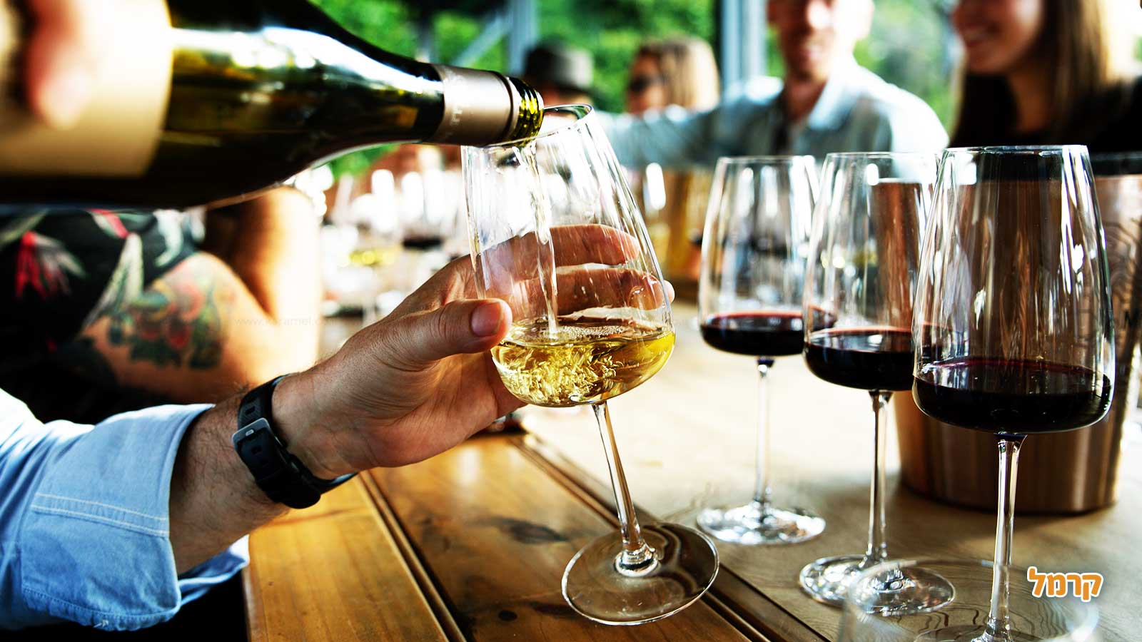 בן עמי סדנאות יין - פשוט להבין יין - 073-7026411