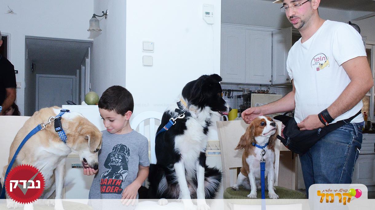 עולם הכלבים של תומר - 073-7585455